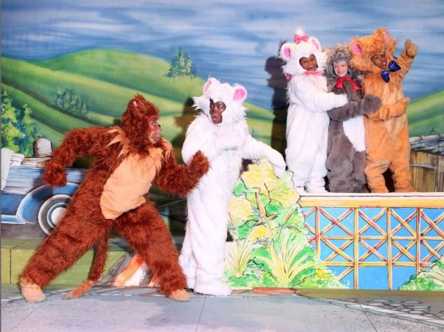 Aristocats reprises at Promusica